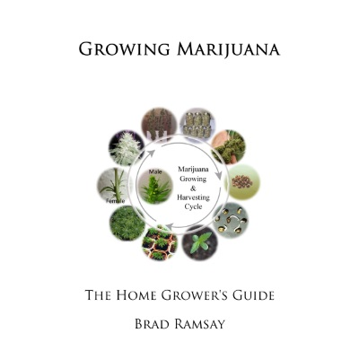 Growing Marijuana: The Home Grower's Guide